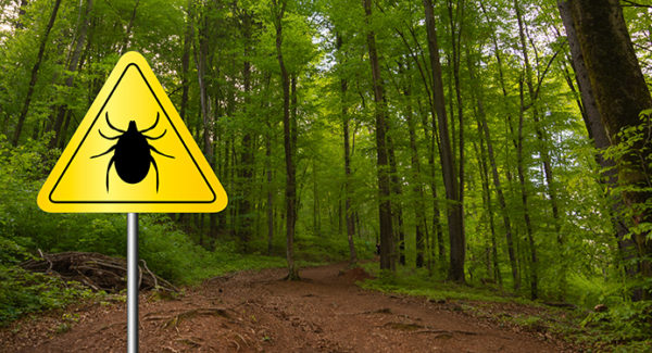 Tick-borne lyme disease warning